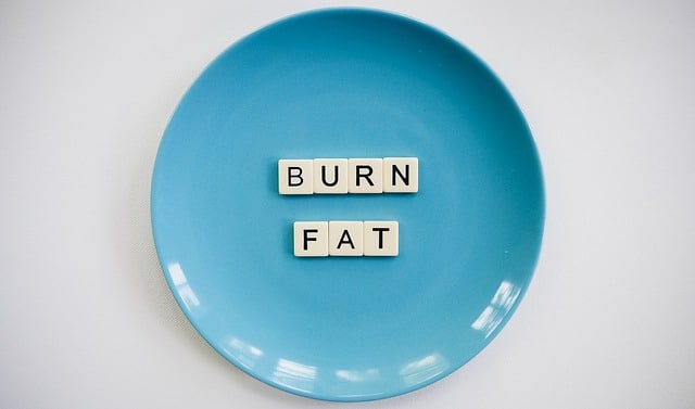Blue plate with the words 'Burn Fat' spelled out on it in game tiles