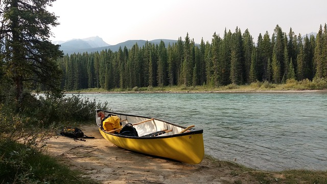 A yellow canoe sits on the bank of a river lined with pine trees