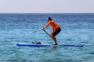 Man in protective long sleeve rash guard, sunglasses, and board shorts, paddle boards in the ocean on a sunny day.